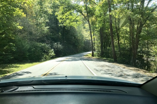 Scenice drive through car window