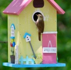 birds19.jpg - 1